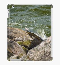 Rocks of the Ocean iPad Case/Skin