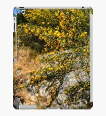 Caragana Flowers  iPad Case/Skin