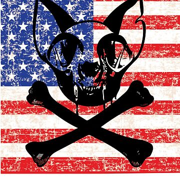USA Cat Skull Independence Day Flag Art by House-of-Roc