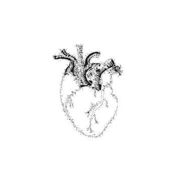 heart by heryca29