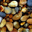 Pebbles by Elizabeth Kendall