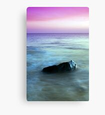Introduction Canvas Print