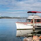 Boats Tuncurry 01 by kevin Chippindall