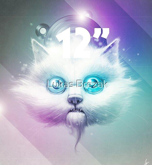 """Disco 12"""" by Lukas Brezak"""