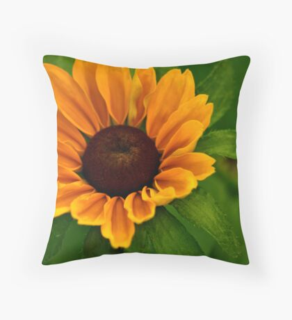 Rudbeckia Hirta Toto Throw Pillow