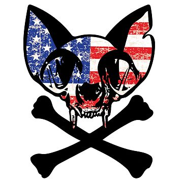 Fourth of July Independence Day Skull Cat  by House-of-Roc