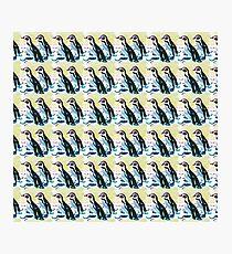 Penguin repeat pattern  Photographic Print