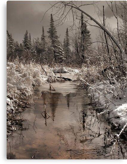 Spring Morning by Heather  Waller-Rivet  IPA