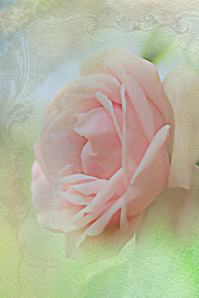 Pink Bliss by Patricia Montgomery