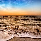 Sunrise In Naples Florida by daphsam
