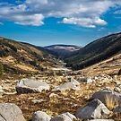 Glendalough, Wicklow Mountains, Ireland by Alessio Michelini