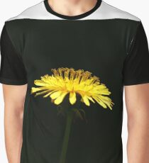 Dandelion with black background Graphic T-Shirt