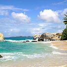 Idyllic tropical beach scene by DARRIN ALDRIDGE