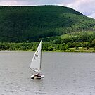 Sailing On Rose Valley Lake by Abbey Walls