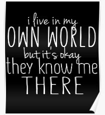 I Live In My Own World Witty Sarcastic Sassy Quote Poster