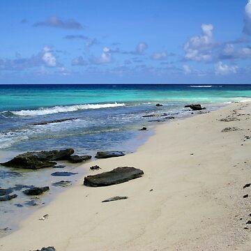 Loblolly Bay Beach Rocks in Anegada by DARRINSWORK