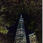 Freedom through the trees - NYC by ShootFirstNYC