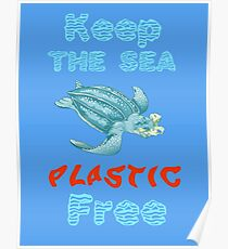 Plastic Pollution Poster