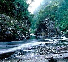 Rock Island Bend, Franklin River, Tasmania by Andy Townsend