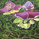 Dewey Lily by Phyllis Dixon