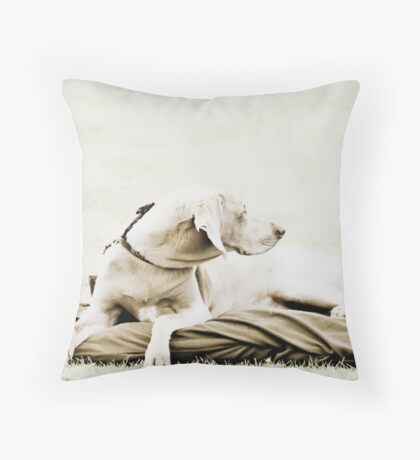 Who's that over there? Throw Pillow