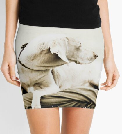 Who's that over there? Mini Skirt