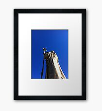 Golden statue Framed Print