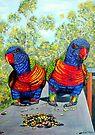 Dinner Date - Rainbow Lorikeets by Linda Callaghan