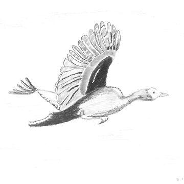 Freebird by zfollweiler