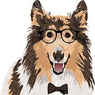 Hipster Rough Collie Sticker for Dog Lovers by haidishabrina
