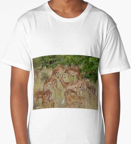 Come children, time to go! IMPALA – Aepyceros melampus melampus – ROOIBOK Long T-Shirt