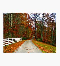 *COUNTRY ROAD* Photographic Print