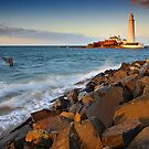 St. Mary's Lighthouse by David Lewins