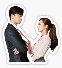 Why Secretary Kim Sticker