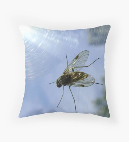fly, reflecting Throw Pillow
