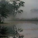 Bantam Lake Connecticut by milton ginos