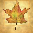 Maple Leaf Illustration by crossmark