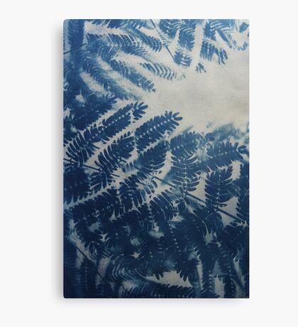 Fern Cyanotype Canvas Print
