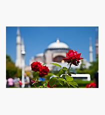 Turkish Rose Photographic Print