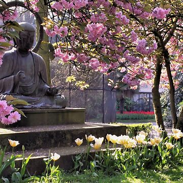 Blessing of Spring by Jokus