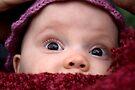 Peek a boo! by JennyMac