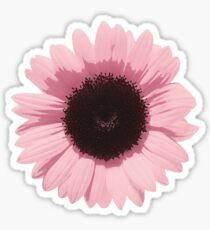 Pink Sunflower  Sticker