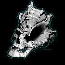 ShellSkull by SJ-Graphics