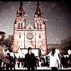 Winter Wonderland 2 by David Petranker