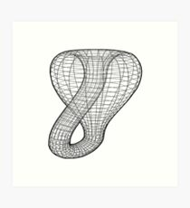 A two-dimensional representation of the Klein bottle immersed in three-dimensional space, #TwoDimensional, #representation, #KleinBottle, #immersed, #ThreeDimensional, #space Art Print