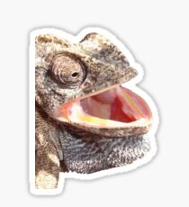Chameleon with Happy Smiling Expression Vector Sticker