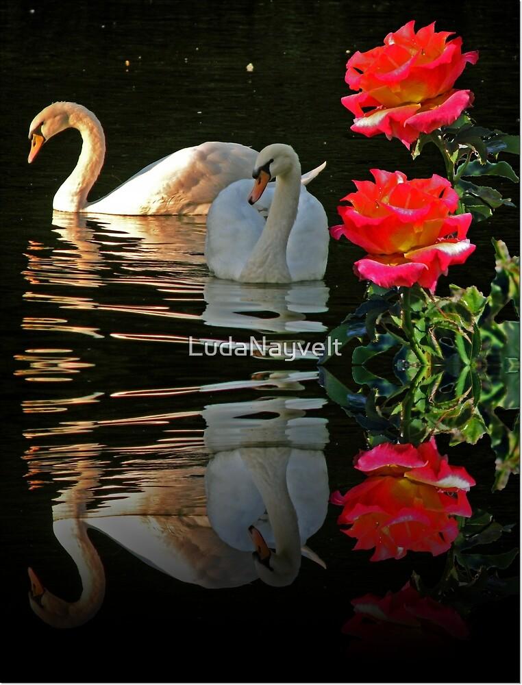 Couples by LudaNayvelt
