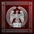 Roman Empire - Silver Imperial Eagle over Red Velvet by Serge Averbukh