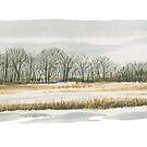 Spring on the Prairies by victorsart