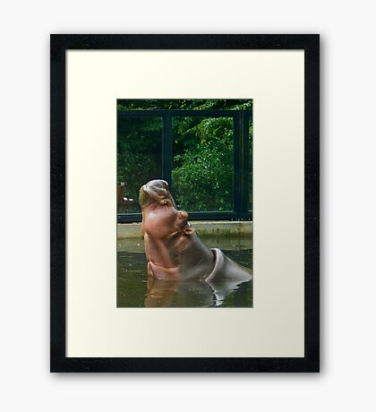 Aaaah... Life is good... Framed Print